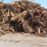 Garden Green Waste Removal